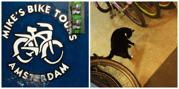 CATS AND BIKES
