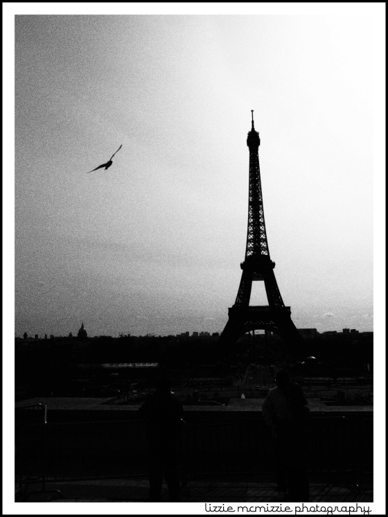 eiffel tower in b&w, watermarked