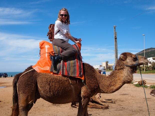 Camel grins!