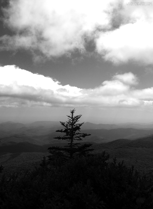 watermarked blue ridge 01